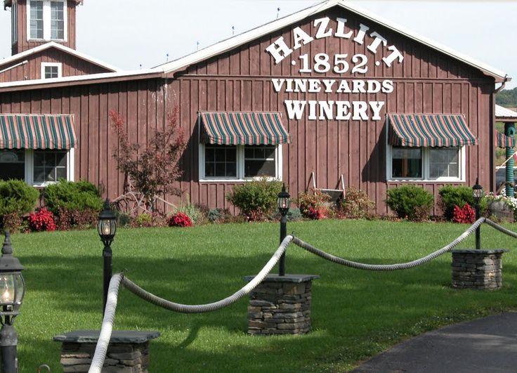 hazlitt winery | Hazlitt Winery  White Cat please!!