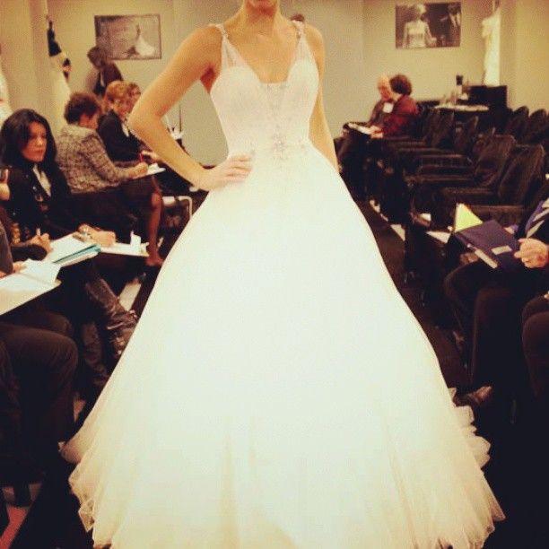 Wedding Photography   Cinema?