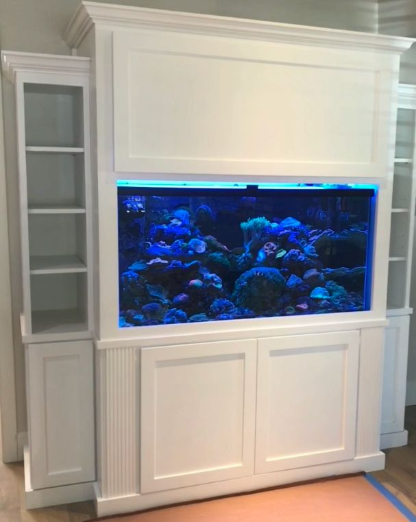 Fish Tank Shaker Cabinets Shaker Cabinets House Entertainment Center
