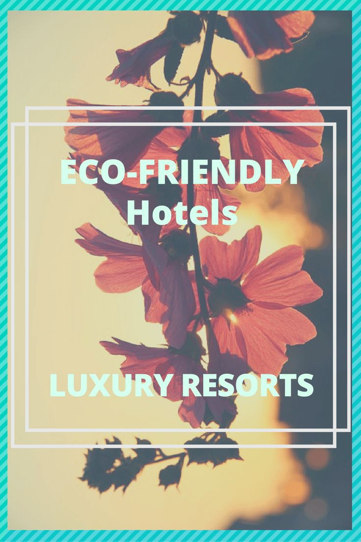 Luxury Eco-Hotel Cornwall's Ethical Practices #ethicaltravel #ecofriendlyhotels