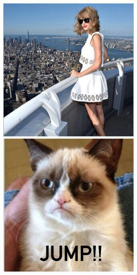 TAYLOR SWIFT!!!! I think... And the grumpy cat too