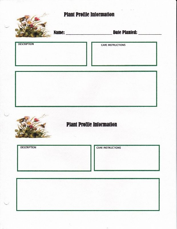 42 best Paper organization images on Pinterest Paper - credit memo form