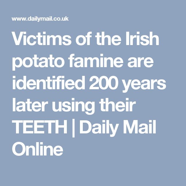 essay on irish potato famine The irish potato famine six long years, with over 1 million dead, and nearly a quarter of the population missing, the irish potato famine left a massive imprint in history (irish 1)  the irish potato famine essay the irish potato.