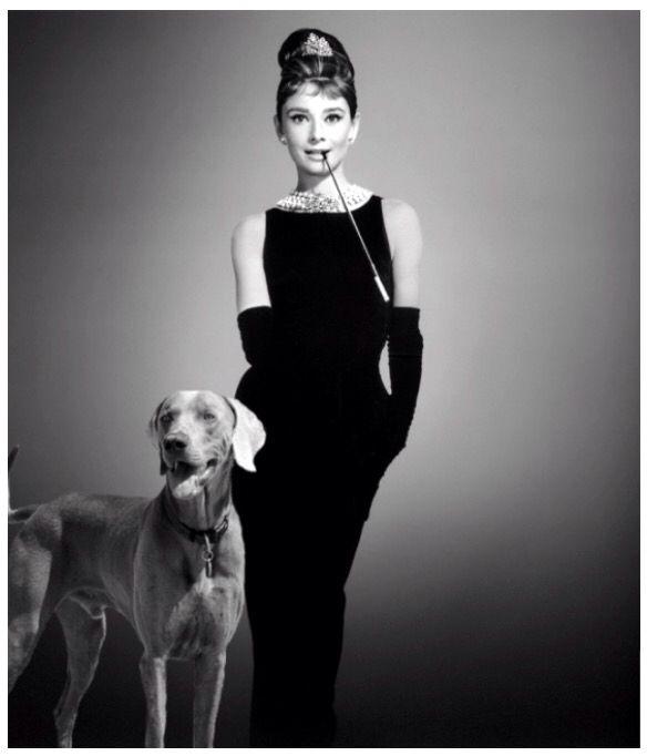 Audrey Hepburn and a Weimaraner.
