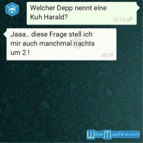 Lustige WhatsApp Bilder und Chat Fails 171 - Harald die Kuh
