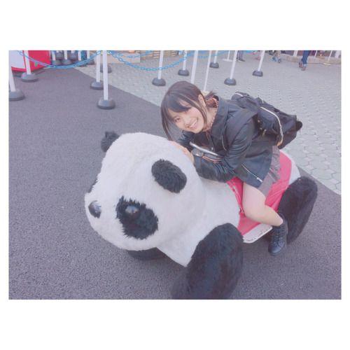 今日は浅草の花やしきに行ってきたよ パンダに乗った   #東京観光... #Team8 #AKB48 #Instagram #InstaUpdate