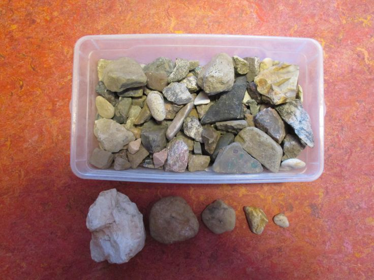 verzameldoos stenen: vergelijken, ordenen, tellen, etc. Nutsschool Maastricht