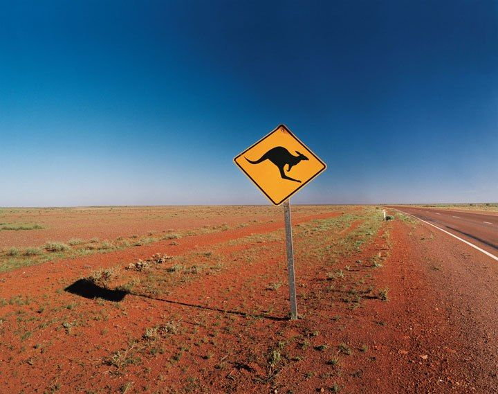 From Darwin in the north to Port Augusta in the south, the Stuart Highway cuts through Australia's Red Centre, where drivers contend with the marsupial population.
