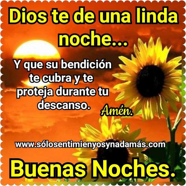Dios Te De Una Linda Noche Linda Noche Buenas Noches Amiga