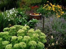 28 best septic covers images on pinterest septic mound for Cottage septic systems