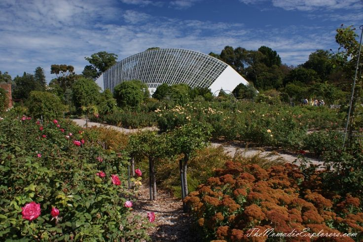 Adelaide Botanic Gardens, South Australia   TheNomadicExplorers.com