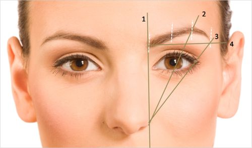1. Line pencil bridge of nose to eyebrow 2. Nose to middle of the eye is where your arch should be 3. Nose to outer part of eye is where your eyebrows should end 4.  Use line to mark how you want to shape your eyebrows