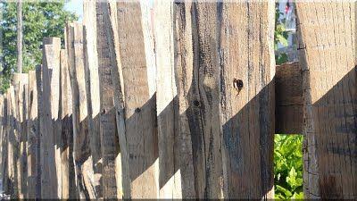 akácfa kerítés