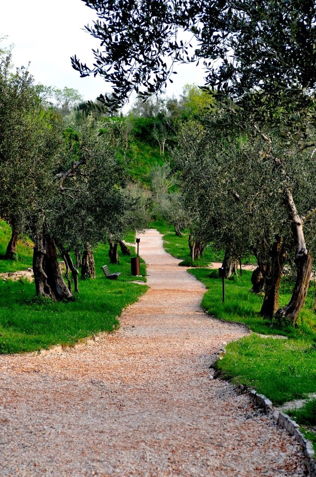 9 best Desenzano del Garda images on Pinterest   Lake garda, Light ...