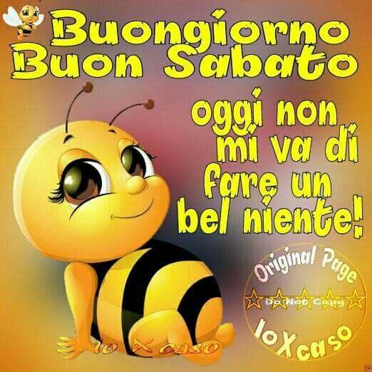 1000 images about buongiorno on pinterest tes piccolo for Immagini divertenti di sabato