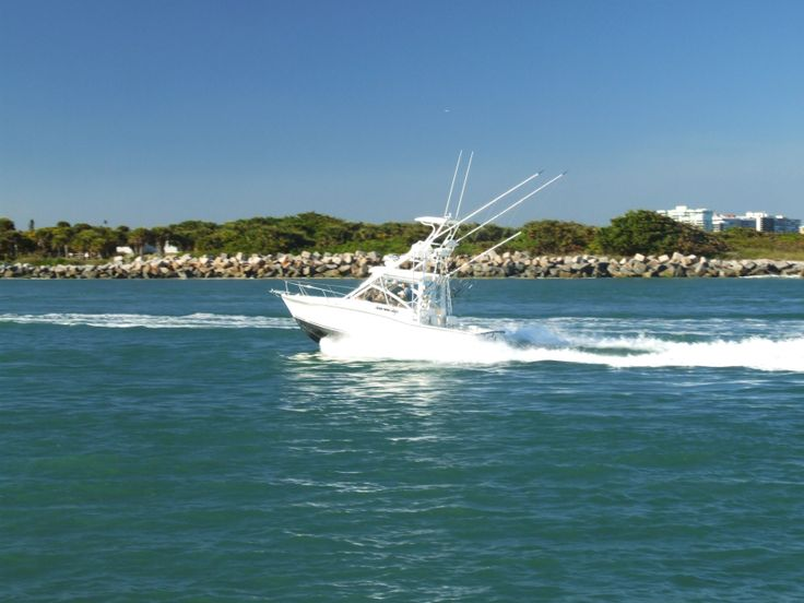 49 best images about treasure coast florida paradise on for Fort pierce fishing