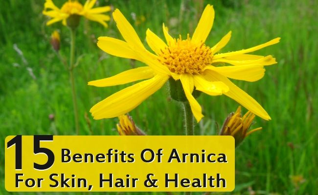 Arnica benefits - More than bruises and sore muscles!