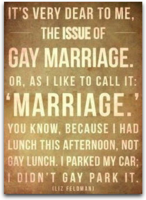 """on the issue of gay marriage. or, as i like to call it: ""marriage"". you know, because i had lunch this afternoon, not gay lunch. i parked my car; i didn't gay park it""Gay Marriage, Quotes 3, Funny Things, Picture-Black Posters, Rad Things, Demotivational Posters, Funny Stuff, My Friends, Favourite Quotes"