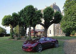 Samochód, Drzewa, ławki, Droga