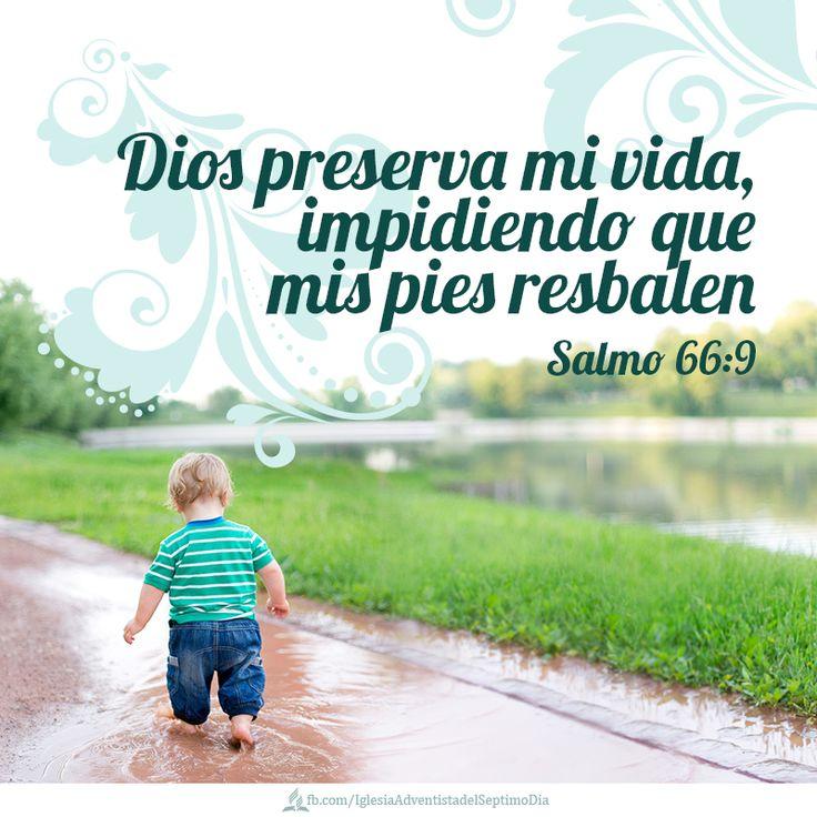 Salmos 66:9 El es quien preservó la vida a nuestra alma, y no permitió que nuestros pies resbalasen.♔