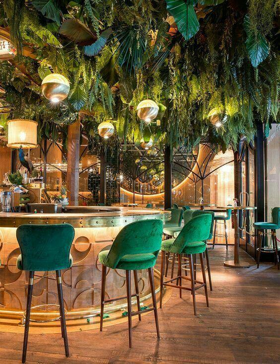 Интересная поточная установка растительности и ламп. Красивые барные стулья, которые соответствуют потолку и атмосфере.