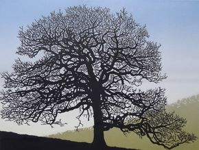 Richard Shimell - Oak near the River Dart. Edition of 50. Handsome oak with tangled branches on a gentle slope. Medium: hand-printed linocut on somerset paper.