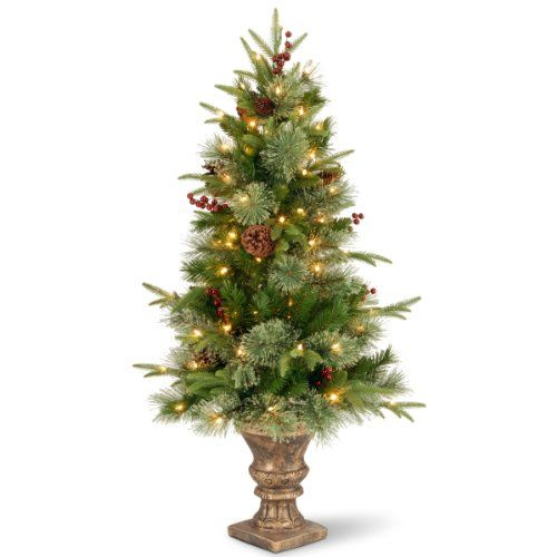 "National Tree (PECO4-306-40) ""Feel-Real"" Colonial Entrance Tree with Berries and Cones in Dark Bronze Plastic Pot with 100 Clear UL-Lights, 4-Feet National Tree Company http://www.amazon.com/dp/B00EW02GBK/ref=cm_sw_r_pi_dp_1vItwb0XMAZC4"