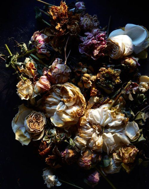 Dead flowers  If I use plates for my idea I would like to have a full place setting of them and set up a table like display as an instillation. I think dead flowers would further push my concept that I have in mind.