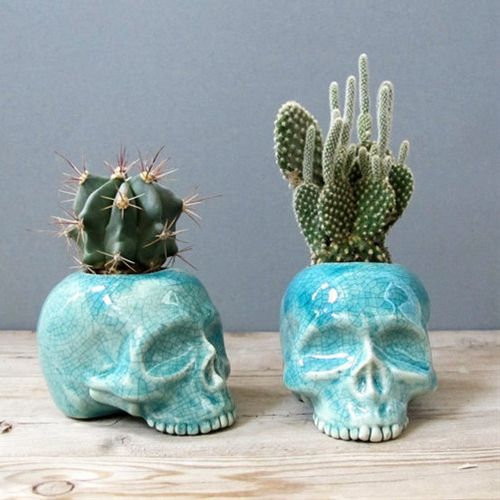 place these on a bookshelf or in the kitchen #skull #planters
