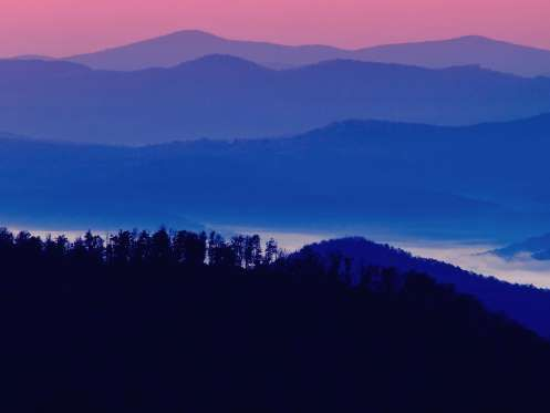 In the early morning hours, the winding Blue Ridge Parkway grants road trippers views of mountain pa... - Dawna Moore / Alamy