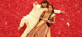 Mr and Mrs Ramachari To Enter 50 Crore Club