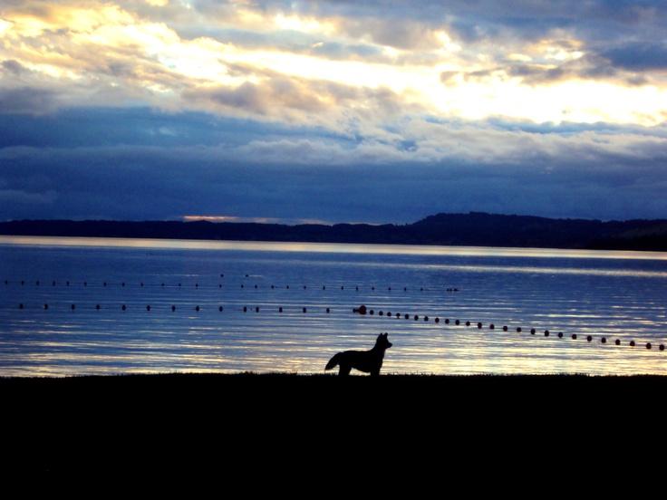 Lago Ranco, Futrono, Chile.