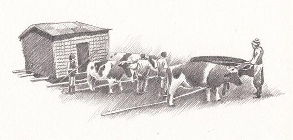 Ilustración en gráfito, Minga