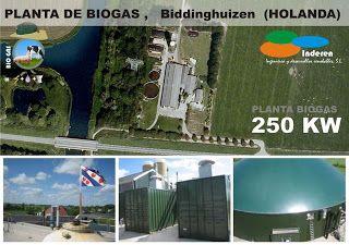 instaladores planta de biogas BiODIGESTORES biddinghuizem holanda 250 KW INDEREN ENERGIAS RENOVABLES VALENCIA