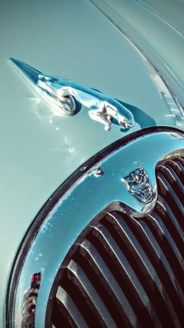 Jaguar Car...took by @DaFearless1