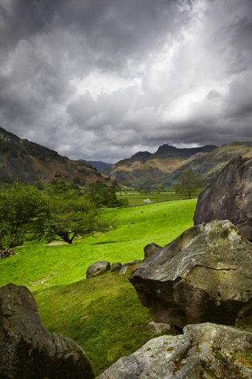 UK, England, Cumbria, Great Britain, Lake District, Langdale, View Towards Langdale Pikes In The Langdale Valley - eStock