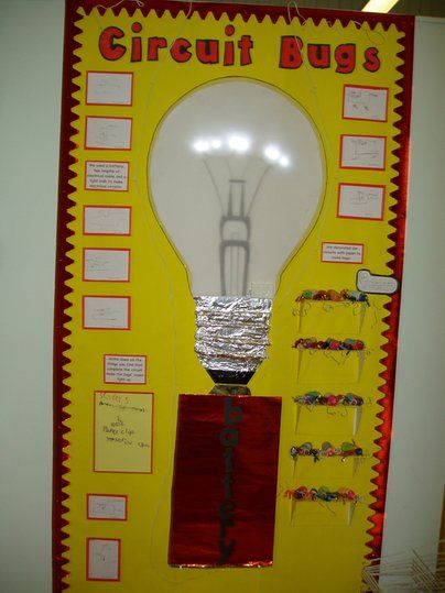Circuit Bugs Display, classroom display, class display, battery, science, bugs, minibeast, electricity, bulb, Early Years (EYFS),KS1&KS2 Primary Resource