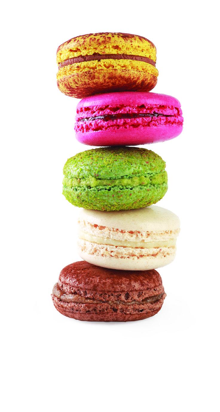 Divan patisserie macarons colors tasty sweet for Divan patisserie