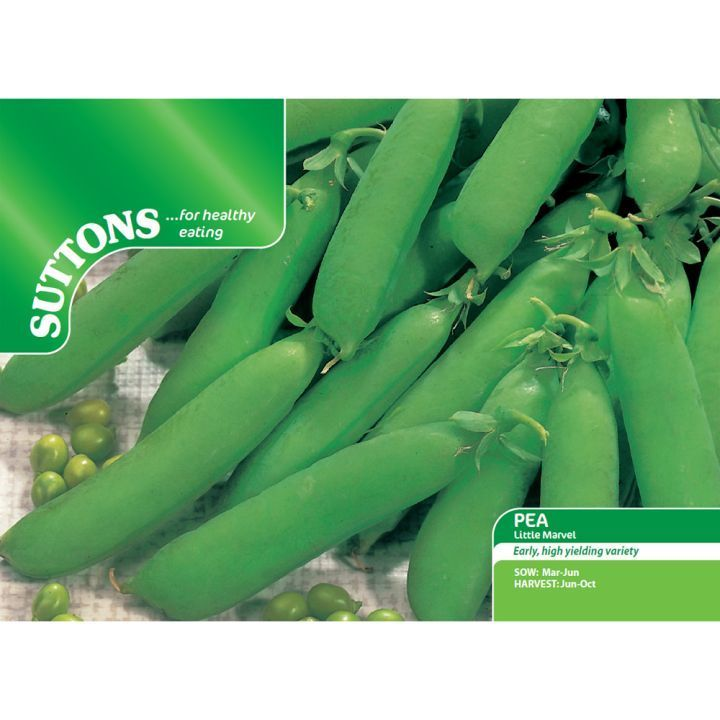 Pea Little Marvel Seeds - Suttons Seeds and Plants
