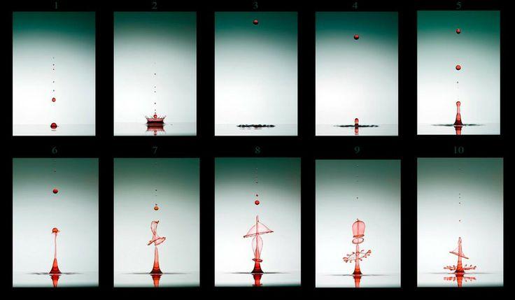 evolution of waterdrops by Veli Aydoğdu on 500px