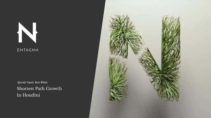Special Guest - Ben Watts: Shortest Path Growth on Vimeo