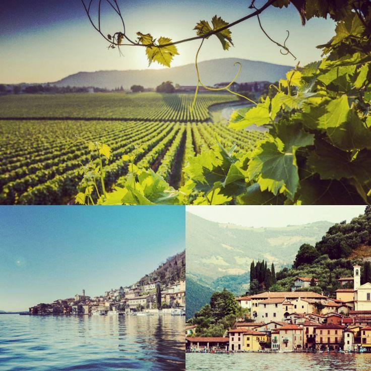 FRANCIACORTA Il gusto di un buon vino e la vista del Lago d'Iseo #motorcycle #topdestination http://motohotel.com/ITA/motogiro-sulla-strada-del-franciacorta/