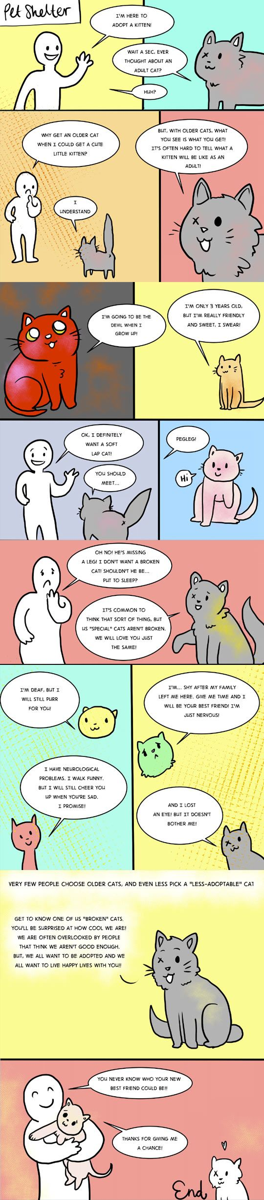 Great message about #adopting the right #pet for you! Just because it's not the kitten or puppy you pictured, doesn't mean s/he's not a fantastic companion.