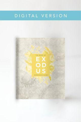25+ best Book Of Exodus ideas on Pinterest   The exodus ...