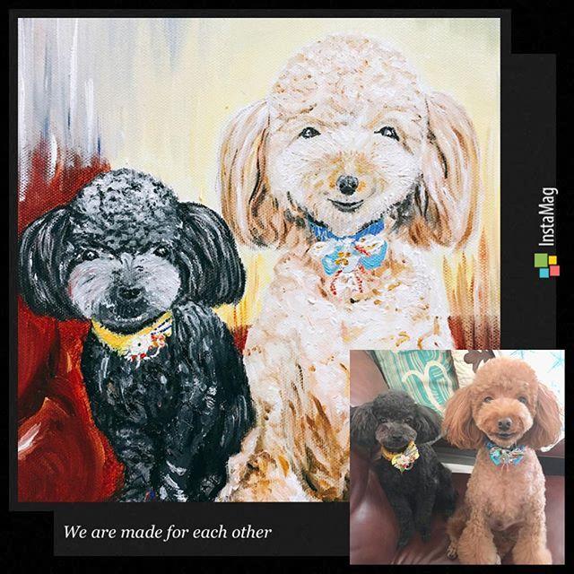 お義父さんから素敵な絵が届きました✨ ラキ&コアを油絵で描いてくれたみたいで、毛の1本1本の色や表情もすごいリアルで上手で感激~(*´˘`*) 早速リビングに飾りました✨ お義父さんありがとう( ´͈ ᵕ `͈ ) ・ ・ ・ #all_dog_japan#west_dog_japan#トイプードル#トイプードル男の子#トイプードルレッド#トイプードルブラック#トイプードル多頭飼い#トイプー#愛犬#わんこ#いぬばか #油絵 #義父からのプレゼント #リアルで可愛い #愛犬の絵 #素敵便が届きました