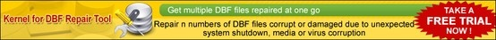 Animated demo for DBF database recovery software for the recovery of tables and data from damaged DBF files.