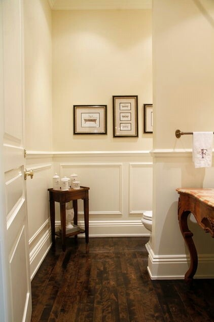 like the idea of a hidden toilet...probably not feasible for us....really like the wainscoting