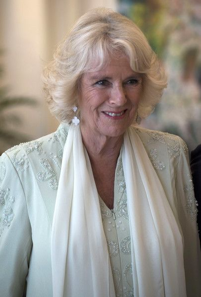 Camilla Parker Bowles Photos - Camilla, Duchess of Cornwall attends a reception and dinner at the Istana Presidential Palace on October 31, 2017 in Singapore. Prince Charles, Prince of Wales and Camilla, Duchess of Cornwall are on a tour of Singapore, Malaysia, Brunei and India - The Prince Of Wales & Duchess Of Cornwall Visit Singapore, Malaysia, Brunei And India - Day 2