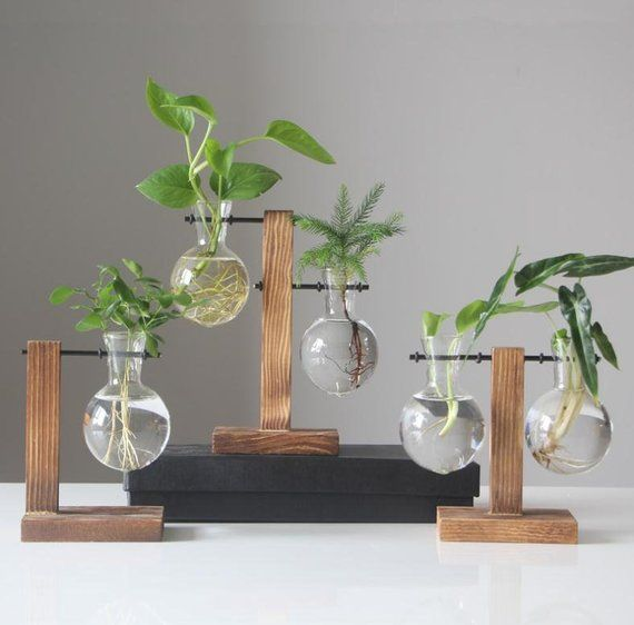 New Glass Terrarium Plant Pot With Wood Stand Glass Planter Water