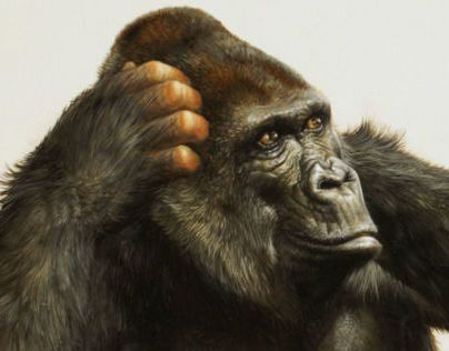 Consulter ce projet @Behance: «three wise monkeys» https://www.behance.net/gallery/14661433/three-wise-monkeys